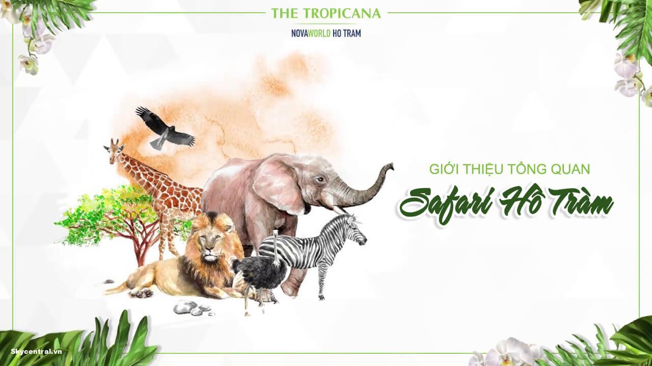 safari hồ tràm